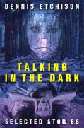 Book Cover Talking in the Dark